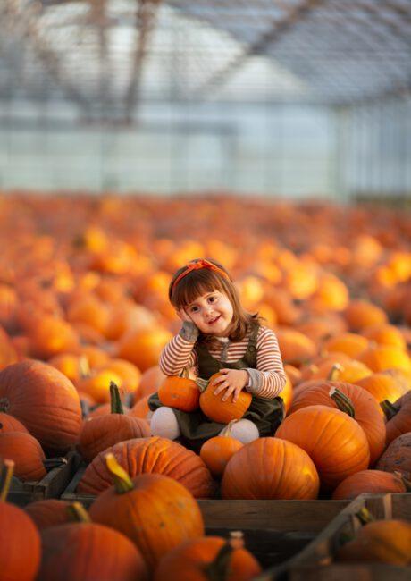 Jesienna sesja z dynią